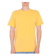 American Apparel Organic Cotton T-Shirt