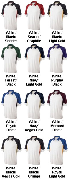 Mens Demand Coaches Polo Shirt by Holloway - All Colors