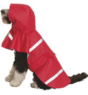 Custom Doggie New Englander Rain Jacket